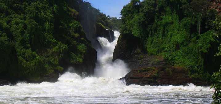 Why you go to Murchison Falls National Park with us. Here are some of the reasons
